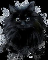 The Black cat by Kajenna