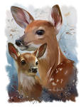 Wildlife: Sika deer