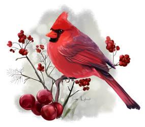 Cardinal by Kajenna