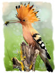 Hoopoe sitting on a tree stump watercolor painting