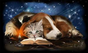 Bedtime Stories by Kajenna