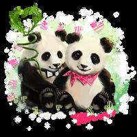 Panda bears by Kajenna