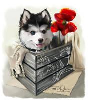 Husky and poppies by Kajenna
