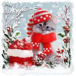 Snowy by Kajenna
