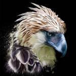The Philippine harpy