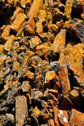 rusty stones by peitxon