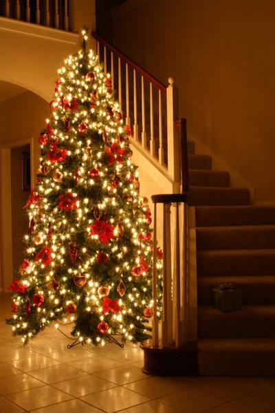 Christmas Tree 2004 2 by SmellsLikeDookie