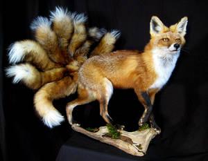 Nine-Tailed Fox (Kyuubi no Kitsune)
