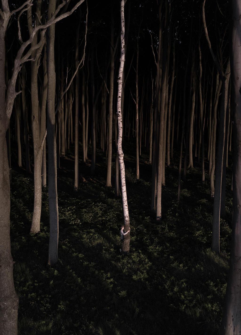 Gespensterwald. by aufzehengehen