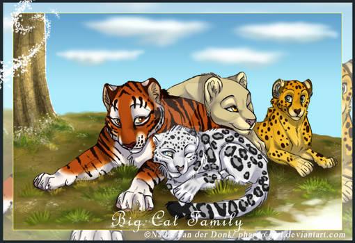 Big cat family