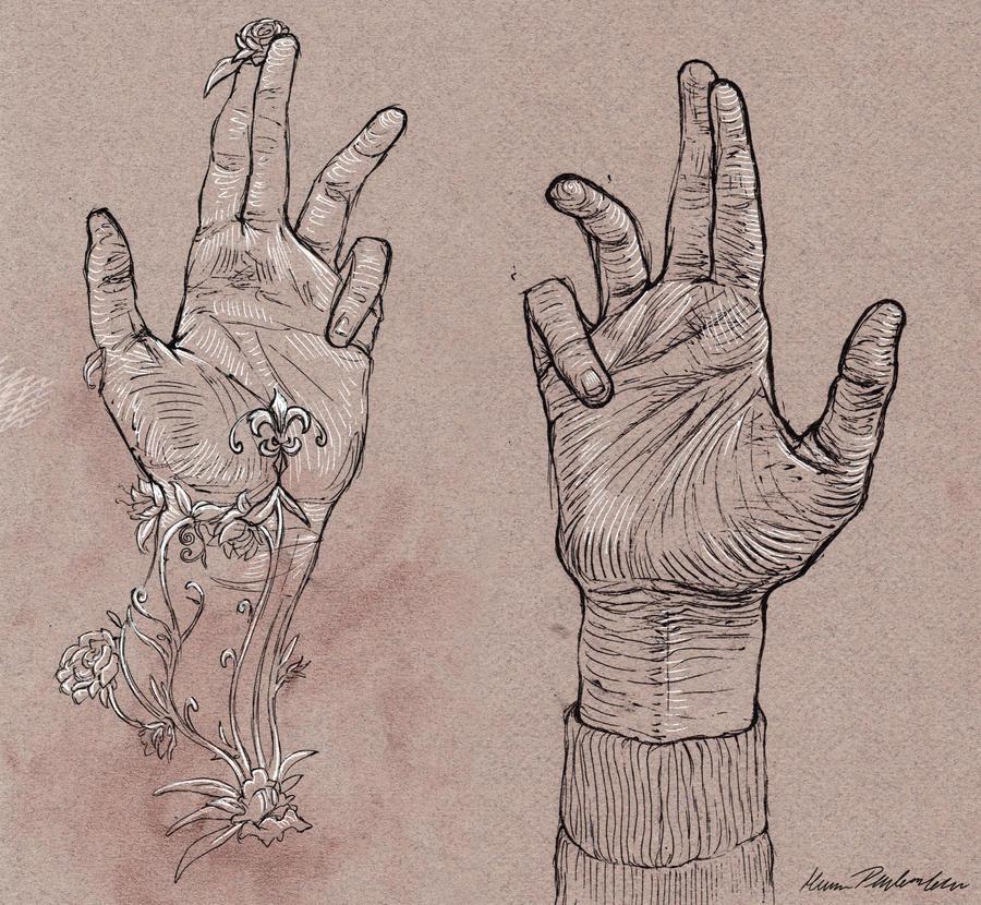 Contour Line Drawing Of Hands : Contour hands by katepfeilschiefter on deviantart