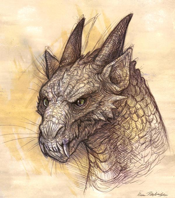 Dragon Head Sketch by KatePfeilschiefter on DeviantArt