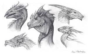 Dragon Busts by KatePfeilschiefter