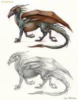 Sapient Dragon Profile by KatePfeilschiefter