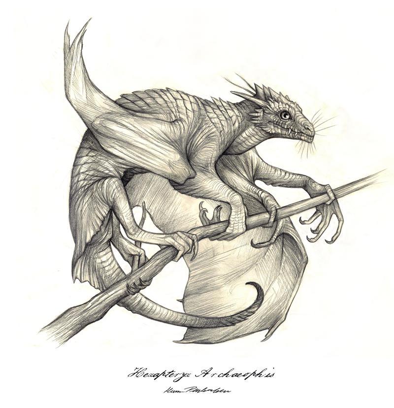 Hexapteryx Archeophis by KatePfeilschiefter