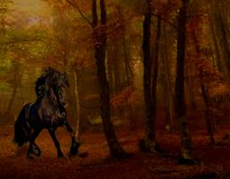 Horse in autumn twilight