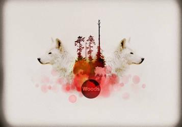 Woods by maKrop