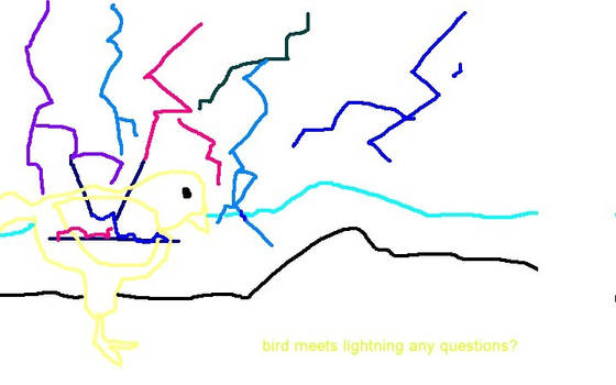Bird meets lightning..