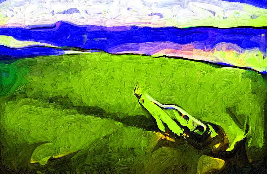 http://fc06.deviantart.net/fs38/f/2008/337/2/f/Message_In_A_Bottle_by_Franflow.jpg