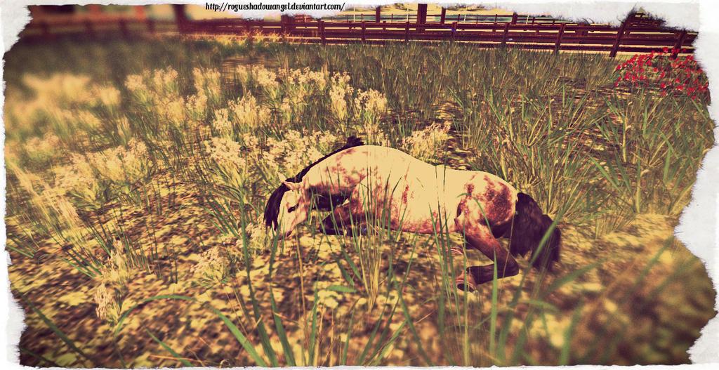 Lazy Day by RogueShadowAngel