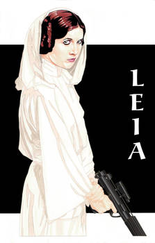 Princess Leia 3