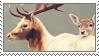 Deer by MysticWarrior7
