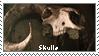 Skulls by MysticWarrior7