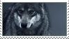 Wolf by MysticWarrior7