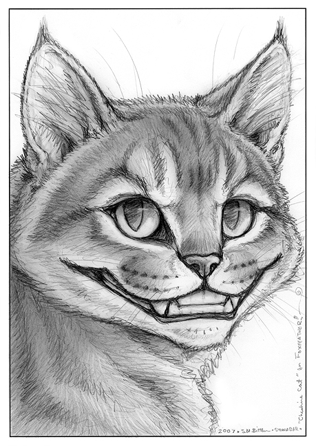 how to draw the cheshire cat face