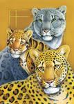 Totem Card: Leopards