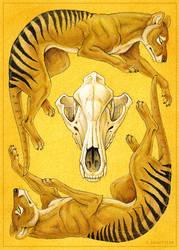 Totem Card: Thylacine by synnabar