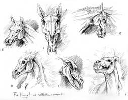 Skeleton Horses or Nightmares by synnabar