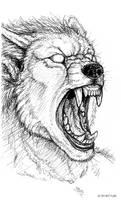 Pen Sketchbook -Snarl Growl