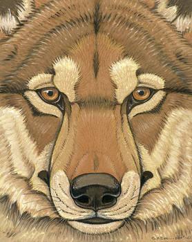 Prehistoric Series - Dire Wolf
