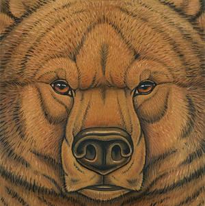 Prehistoric Series - Cave Bear