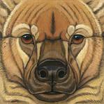 Prehistoric Series - Giant Hyena by synnabar