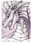 ACEO - Dragon
