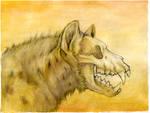 Hyenabones