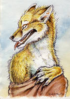 ACEO - Pale Shelter (canine) by synnabar