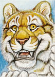 ACEO - Golden Tiger Hi! by synnabar