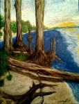 NW Florida National Seashore by Defiant2Death
