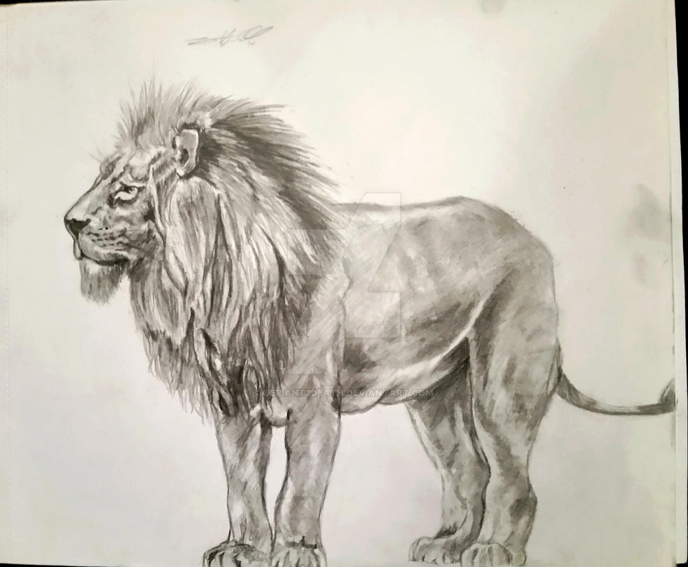 Leo by Defiant2Death