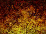 Fall Time 12 by Inthename-Stock