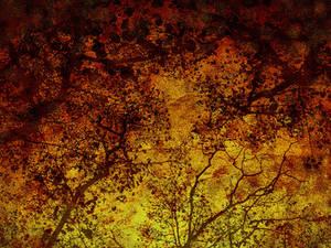 Fall Time 12
