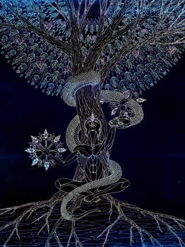 The Tree of Life - Haven