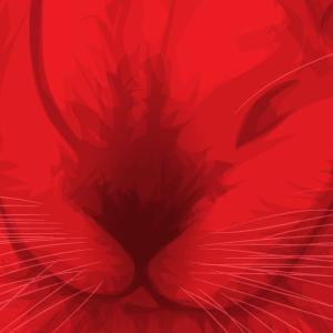 RedRabbitus's Profile Picture