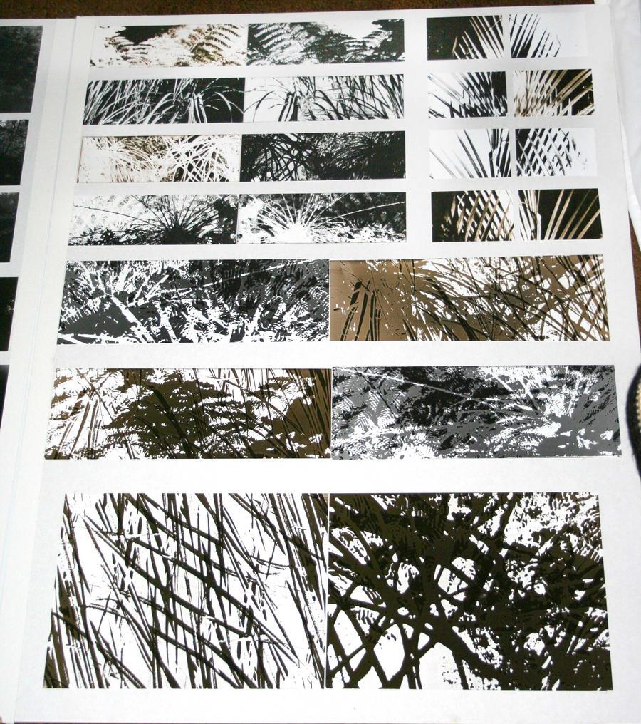 2006 2 of 2 by vorno photography darkroom traditional 2010 2014 vorno ...