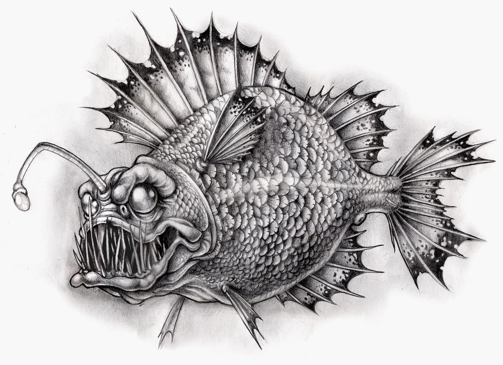 Angler Fish Tattoo Black And White Images amp Pictures Becuo