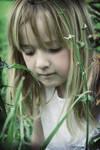 In the Garden Reto Colour