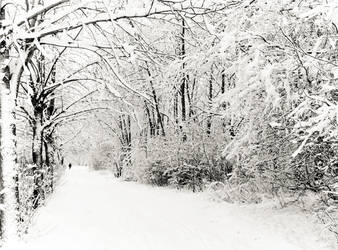 whitecorridor by riddlebow